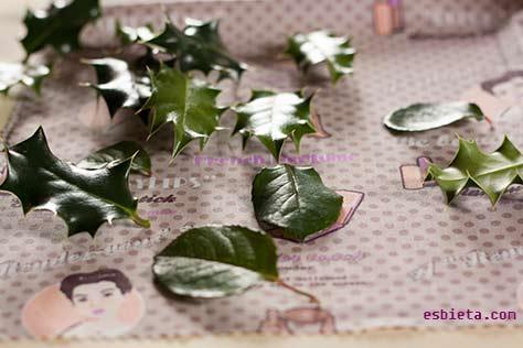 hojas-chocolate-5