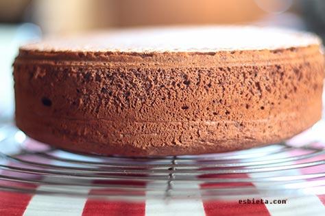bizcocho sin levadura, bizcocho de chocolate