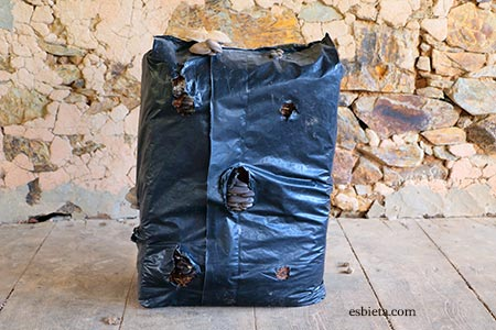 saco-setas-ostra-01