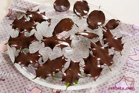 hojas-chocolate-3
