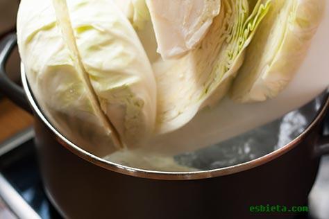 repollo-gratinado-salsa-9