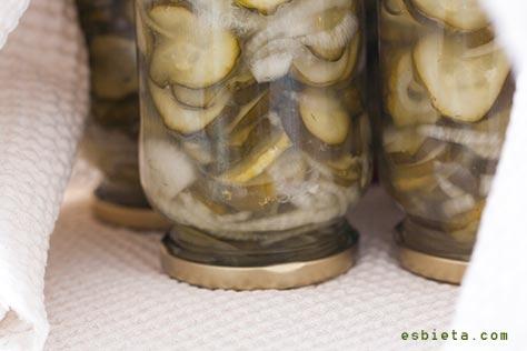 pepinos-agridulces-3