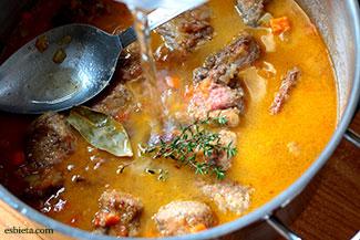 carne-estofada-milanesa-4