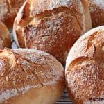 Pan bollitos blancos para bocadillos del cole