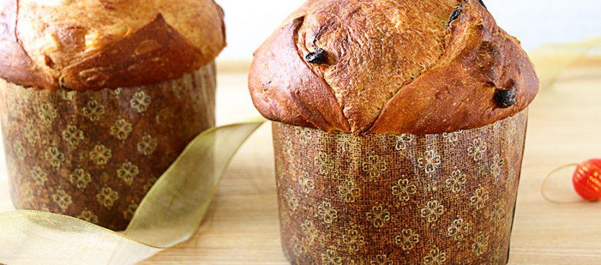 Panettone italiano – Pan dulce de Navidad casero